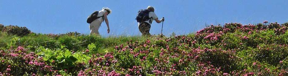 Escursionismo a Courmayeur