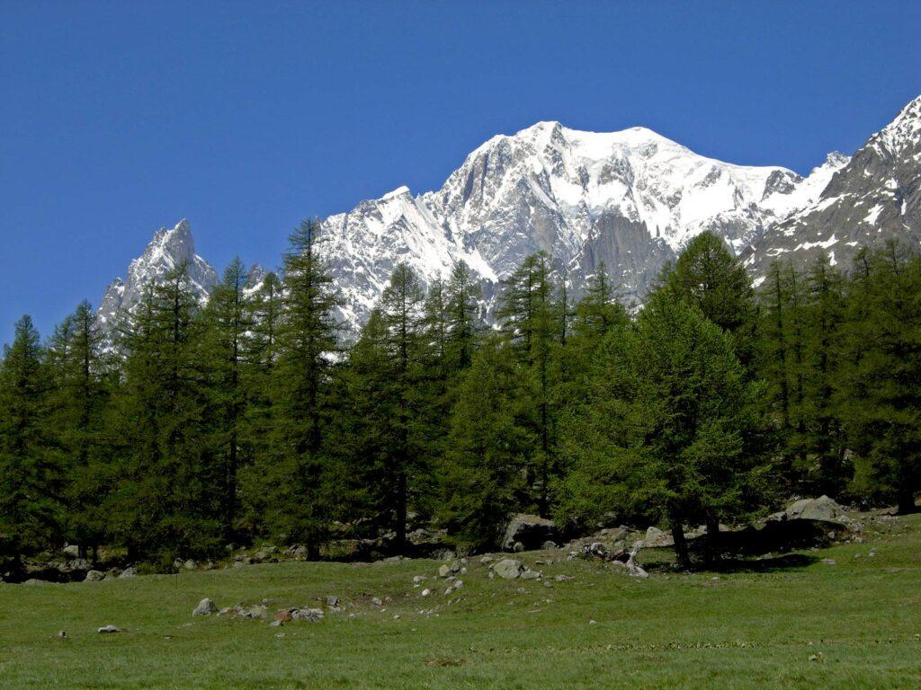 Le vaste praterie della Val Ferret tra Planpincieux e Lavachey.